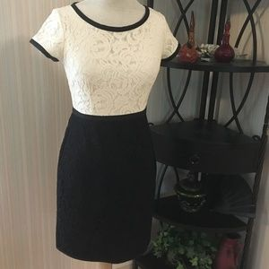 Ann Taylor Petite, Black and White Lace Dress